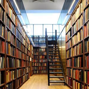 Библиотеки Инсара